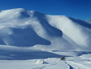 Eskimo Freeride cat in front of mountain